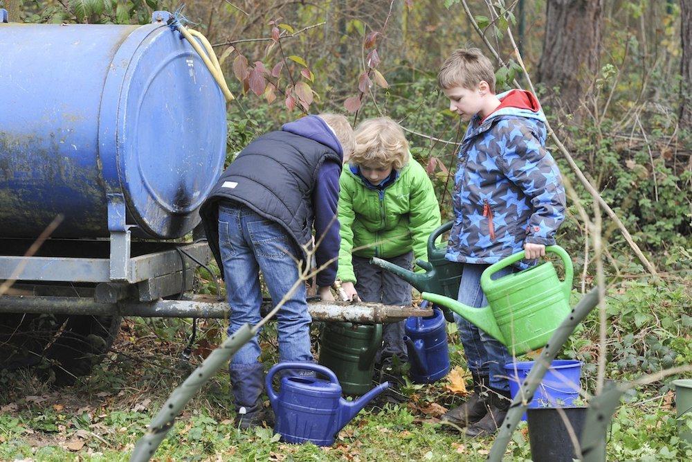 Ku00dcSTERS Garten- und Landschaftsbau, Neuss - News